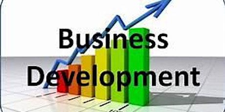Business Development Info Session Webinar tickets