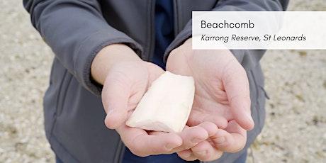 Bayside Alive! Beachcomb -  St Leonards tickets
