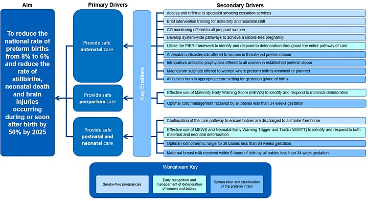 Maternity and Neonatal Safety Improvement Programme Patient Safety Network image