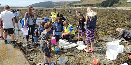 February Half Term Rockpool Ramble tickets