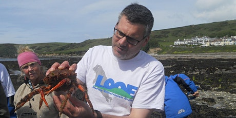 Summer Rockpool Ramble I tickets