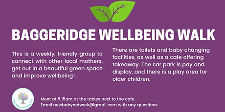 Baggeridge Wellbeing Walks tickets