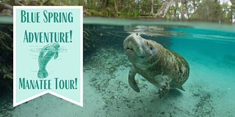 Blue Spring Adventure Manatee Tour tickets