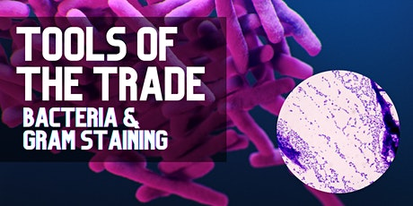 Tools of the Trade: Bacteria & Gram Staining [Monthly Series] tickets