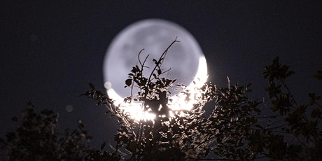 Full Moon Release Yoga and Meditation Workshop tickets