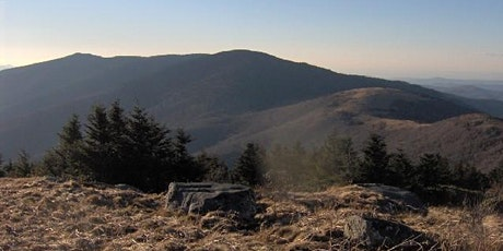 GWHTN NE OFFICIAL EVENT : Roan Mountain Beginner Hike tickets