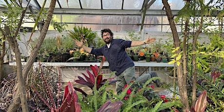 Greenhouse Gossip: Common Tropicals tickets