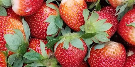 Outdoor Tea Tasting and U-Pick Strawberries tickets
