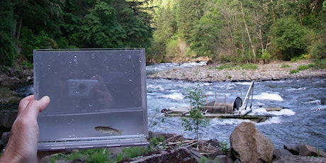 Fish recolonization of the White Salmon River since the Removal of Condit tickets