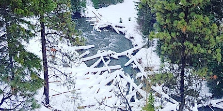 Winter Series - Returning Instream Wood to the North Fork Teanaway River tickets