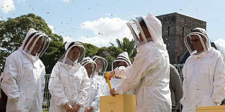 URBAN HUM Beehive Tours tickets