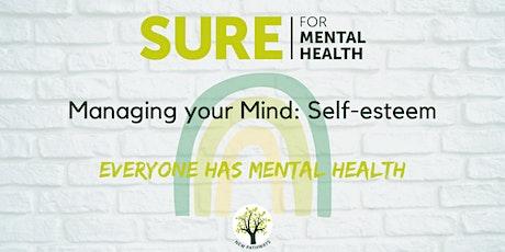 SURE for Mental Health - Bi-polar Awareness tickets