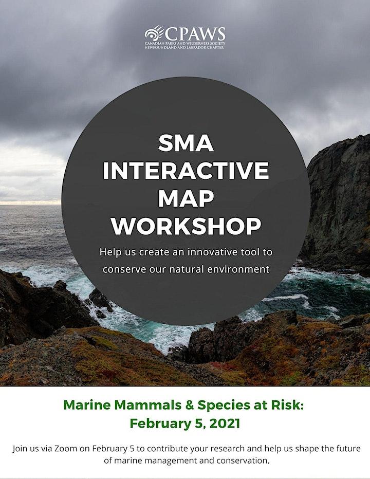 SMA Interactive Workshop Series - Marine Mammals & SAR (February 5, 2021) image