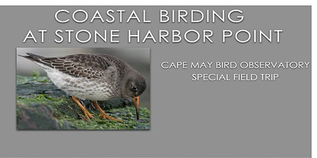 Coastal Birding at Stone Harbor Point February 2021 tickets