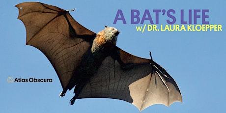 A Bat's Life w/ Dr. Laura Kloepper: Vampire Bats tickets