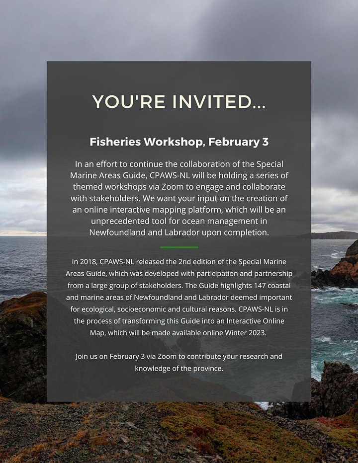 SMA Interactive Workshop Series - Fisheries (February 3, 2021) image