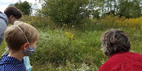 First Sunday Nature Tour: Caterpillars, Butterflies & You! with Connie May tickets