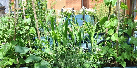 Permaculture Design Principles in Food Growing tickets