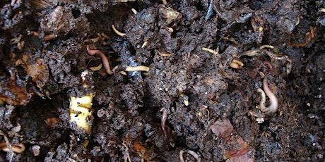 Worm Composting Workshop/Taller de Compostaje con Lombrices tickets