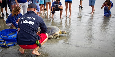 Saving Southern California's Urban Sea Turtles tickets