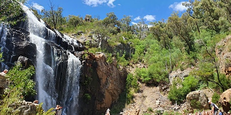 Grampians National Park Day Tour ( Small Group ) tickets
