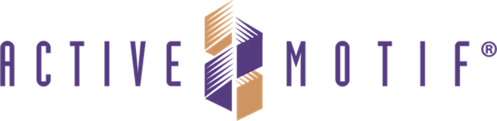 QMUL Epigenetics & Active Motif Chromatin Meeting image