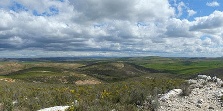 Exploring the botanical wonders of the Overberg Renosterveld tickets