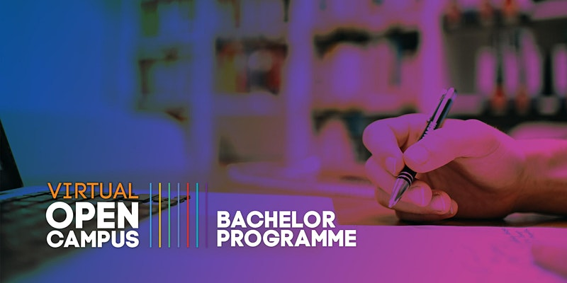 Study Insights: Bachelor Programme