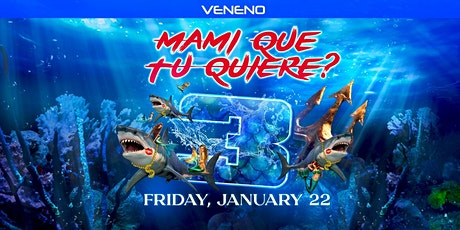 Mami Que tu Quiere? 3 | Believe Music Hall | Friday January 22 tickets