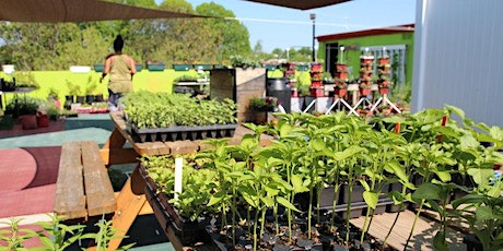 Volunteer at H. St. Farms (Sunday) tickets