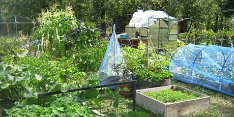 Growing Vegetables: Randolph Backyard Gardener Course tickets