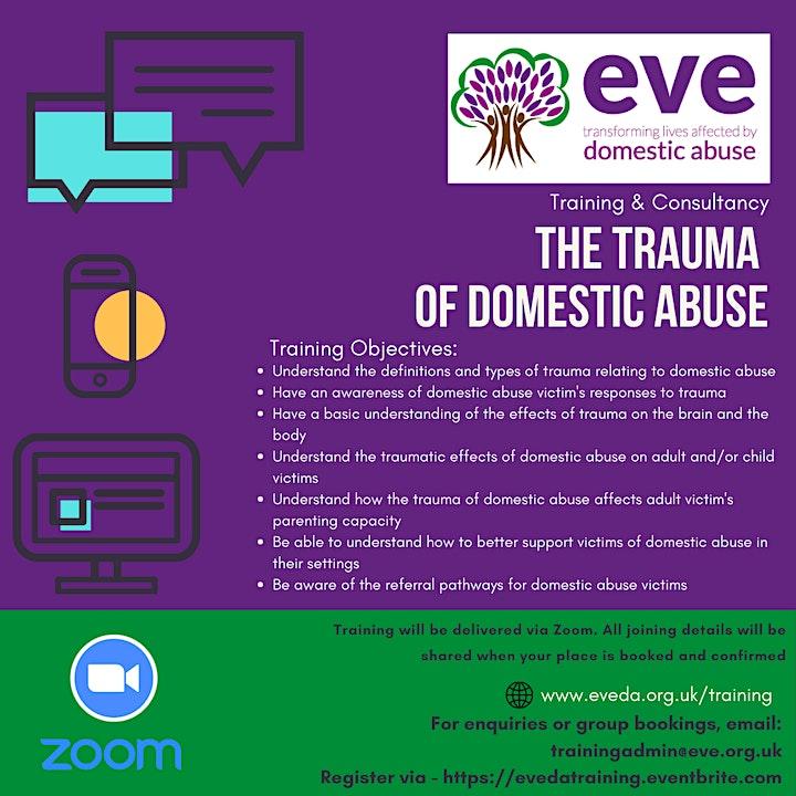 The Trauma of Domestic Abuse image