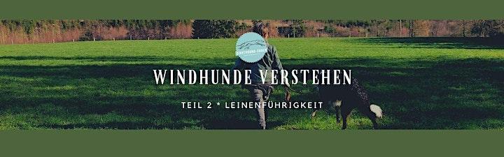 """Online-Seminar """"Windhunde verstehen"""" Teil 1 bis Teil 4: Bild"""