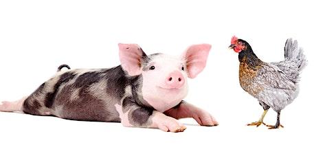 Farmed Animals:  Activism, Legislation, and Litigation tickets