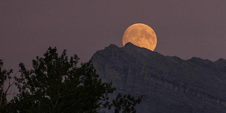 Full Moon in Leo Gathering: Meditation/Reiki/Journaling tickets