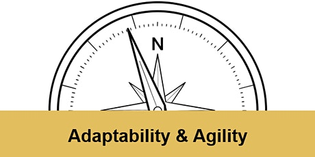 Adaptability & Agility - Online workshop looking at developing adaptability tickets