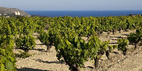 Spanish Virtual Wine Tasting - Wines from Alicanté tickets