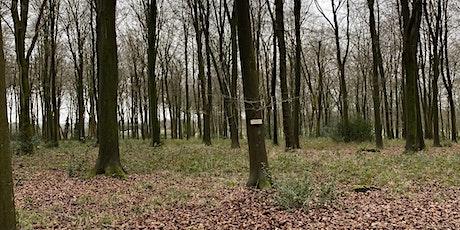 Woodland Silent Retreat tickets