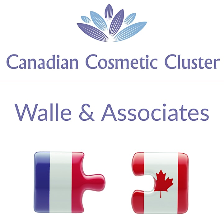 Virtual Canadian Trade Training Workshop - Cosmetic Products image