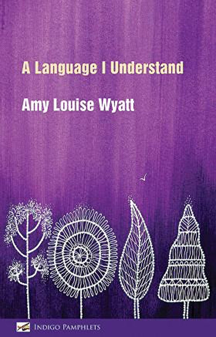 Launch of 'A Language I Understand' by Amy Louise image