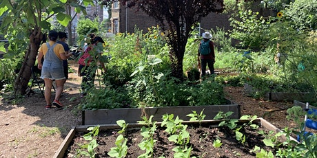 Project-Based Gardening for Different Ages tickets