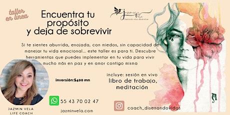 TALLER EN LINEA ENCUENTRA TU PROPOSITO Y DEJA DE SOBREVIVIR boletos