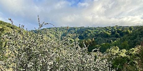 Naturaleza para todos y todas en la Reserva Natural de Foothills entradas