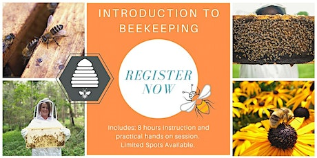 JAN 2021 Introduction to Beekeeping tickets