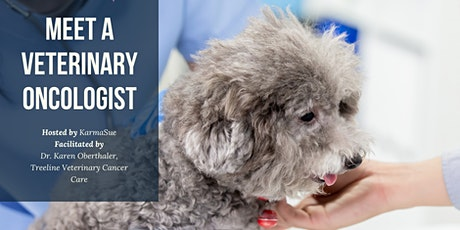 Meet a Veterinary Oncologist - A KarmaSue Education Workshop tickets
