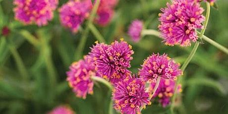 Grow Your Own Cutting Garden tickets