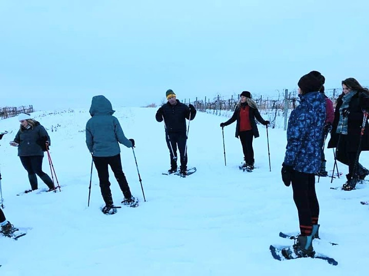 Snowshoeing the Vines and Tasting the Wines at Wild Hills Winery image