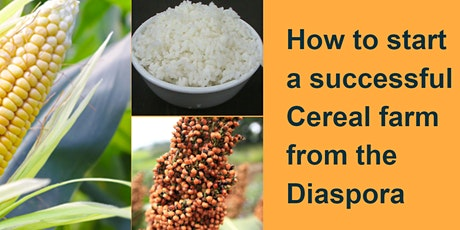 How to start a successful CEREAL farm from the Diaspora tickets