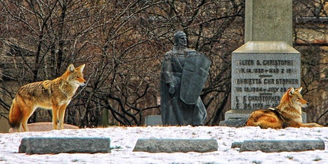 Virtual Tour: Health Scares in History (Graceland Cemetery) tickets