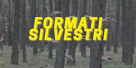 FORMATI SILVESTRI /1 biglietti